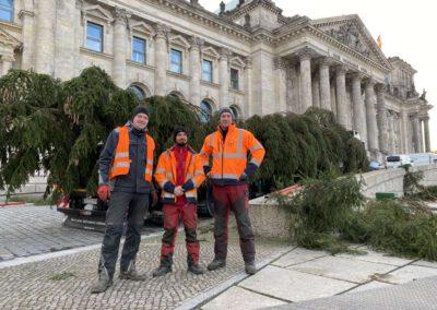 ikw-gmbh-weihnachtsbaum-bundestag-2020-10