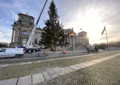 ikw-gmbh-weihnachtsbaum-bundestag-2020-16