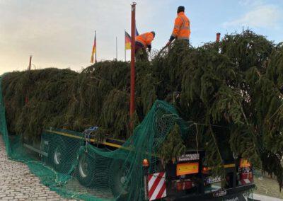 ikw-gmbh-weihnachtsbaum-bundestag-2020-8