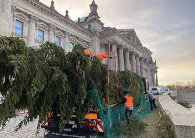 ikw-gmbh-weihnachtsbaum-bundestag-2020-9